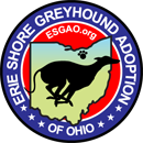 Erie Shore Greyhound Adoption